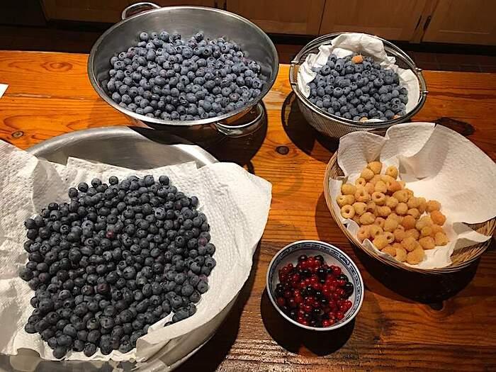 berries6_25_21